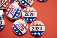A 2020 voting badge.